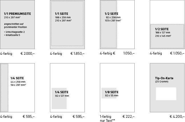 Download PDF (0,2 MB)